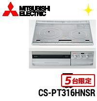 CS-PT316HNSR商品画像